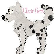 Clear Gem