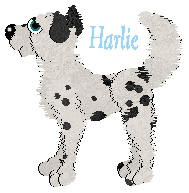 Harlie